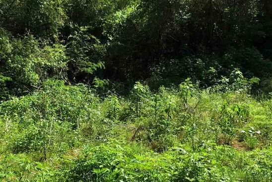 null bed null bath Vacant Land at 3105 50th Ave N Birmingham, AL, 35207 is for sale at 8k - google static map