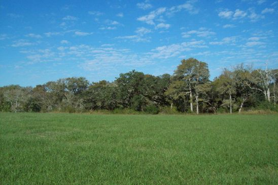 null bed null bath Vacant Land at 0 County Rd 413 River Hollow Way Dr Blessing, TX, 77419 is for sale at 42k - google static map