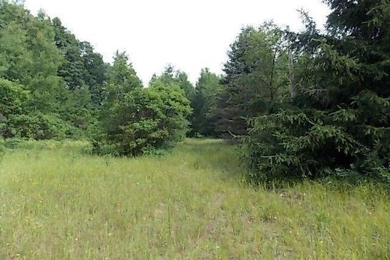 null bed null bath Vacant Land at VL Pcl 7 Skeels Rd Holton, MI, 49425 is for sale at 19k - google static map