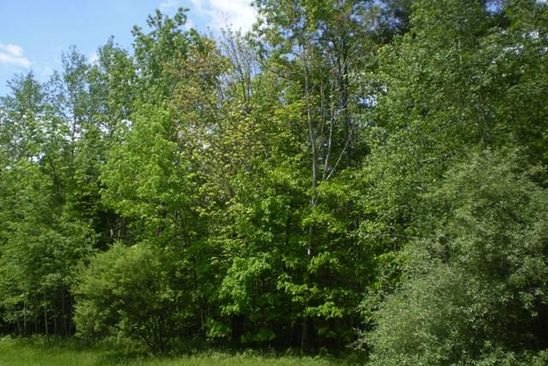 null bed null bath Vacant Land at 0000 Prospect Ridge Rd Horseheads, NY, 14845 is for sale at 150k - google static map