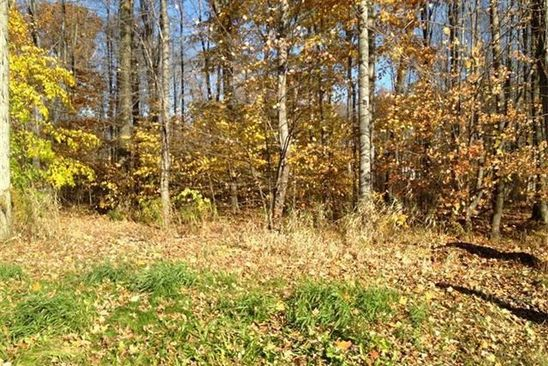 null bed null bath Vacant Land at 42 Brookview Dr Cortland, OH, 44410 is for sale at 33k - google static map