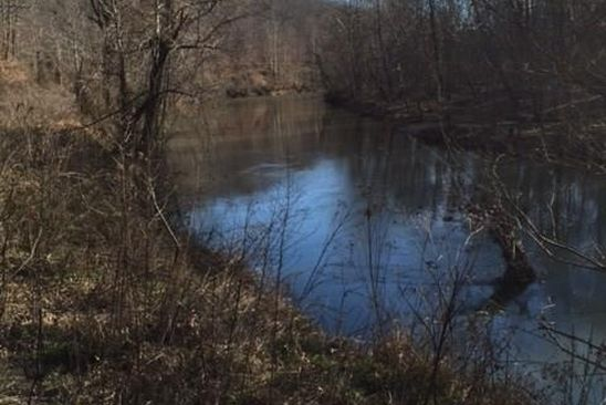 null bed null bath Vacant Land at 8 Ac. R/R Schuyler, VA, 22969 is for sale at 65k - google static map