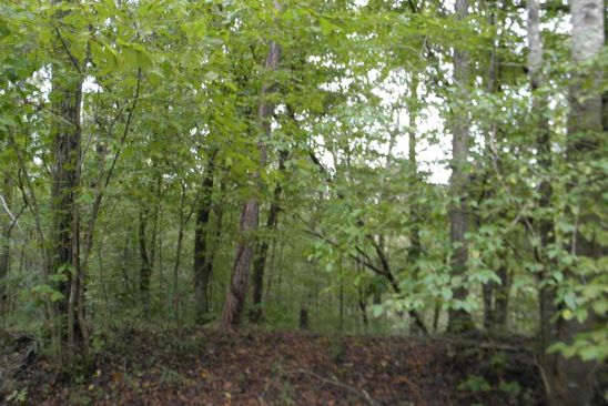 null bed null bath Vacant Land at 0 County Road 508 Moulton, AL, 35650 is for sale at 30k - google static map