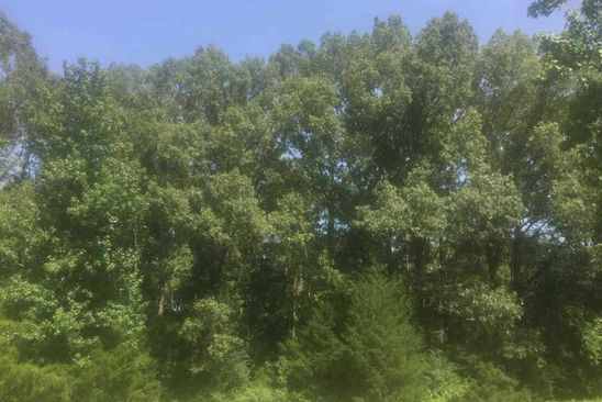 null bed null bath Vacant Land at 0 Dulaney Rd Terry, MS, 39170 is for sale at 120k - google static map