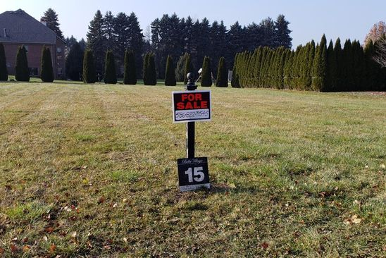null bed null bath Vacant Land at 36201 Vita Bella Dr Clinton Township, MI, 48035 is for sale at 120k - google static map