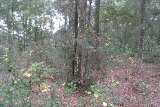 null bed null bath Vacant Land at  NILE AVE WEBSTER, FL, 33597 is for sale at 8k - google static map