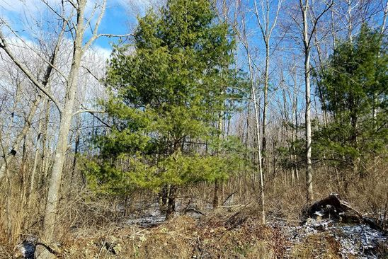 null bed null bath Vacant Land at  Strops Rd Waverly, NY, 14892 is for sale at 23k - google static map