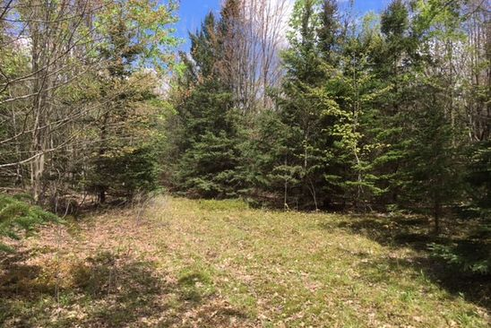 null bed null bath Vacant Land at  Kronus Rd Erin, NY, 14838 is for sale at 97k - google static map