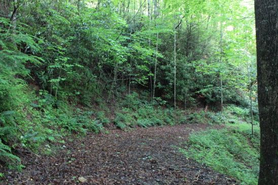 null bed null bath Vacant Land at 4 Lots Whisperingsprings/Briarrun/Valleyview Nantahala, NC, 28781 is for sale at 35k - google static map
