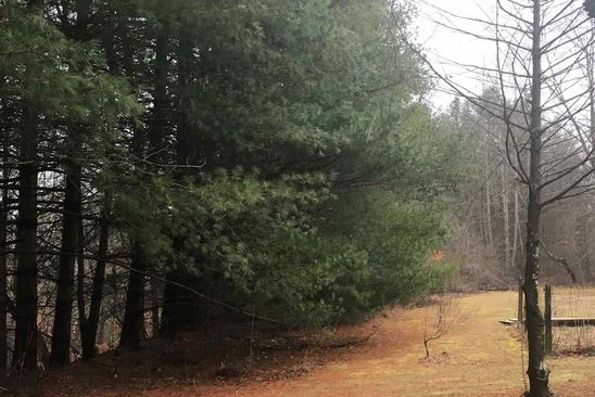 null bed null bath Vacant Land at 0 Salem Rd Schuyler, VA, 22969 is for sale at 799k - google static map