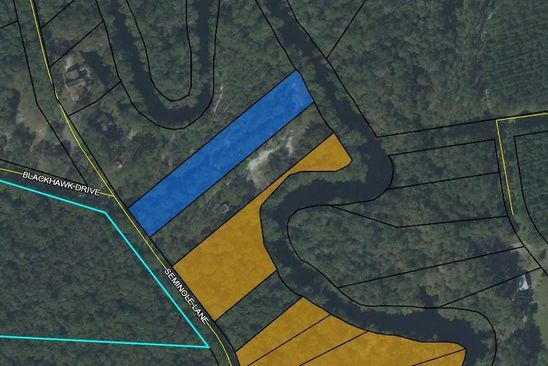 null bed null bath Vacant Land at  Lot 50 Seminole Ln Sopchoppy, FL, 32358 is for sale at 160k - google static map