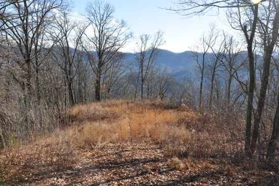 null bed null bath Vacant Land at 11&12 Catherine Bryson City, NC, 28713 is for sale at 65k - google static map