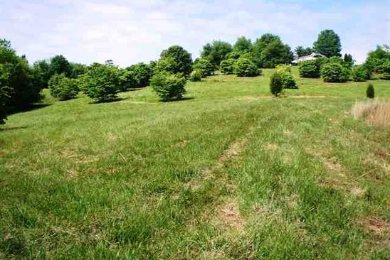 0 bed null bath Vacant Land at 0 Cherokee Dr Morristown, TN, 37814 is for sale at 250k - google static map