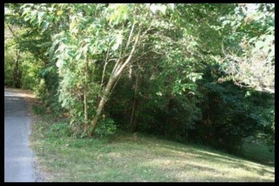 null bed null bath Vacant Land at 151 ROGERS CIR LENOIR CITY, TN, 37771 is for sale at 20k - google static map