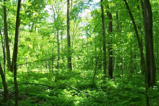 0 bed null bath Vacant Land at 0 Owen Hollow Rd Big Flats, NY, 14814 is for sale at 13k - google static map