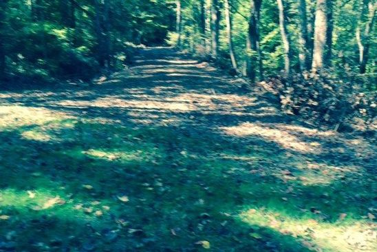 null bed null bath Vacant Land at 7 Ac. Old Rail Old Sand Rd Schuyler, VA, 22969 is for sale at 30k - google static map