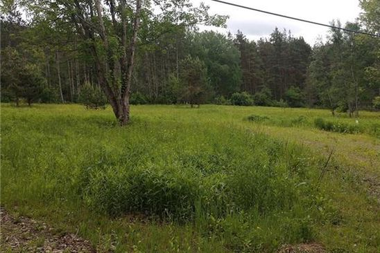 null bed null bath Vacant Land at 4771 ROUTE 98 GREAT VALLEY, NY, 14741 is for sale at 40k - google static map