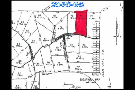 null bed null bath Vacant Land at E Oakwood Trail Trl Reed City, MI, 49677 is for sale at 22k - google static map