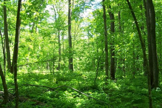 null bed null bath Vacant Land at  Owen Holw Big Flats, NY, 14814 is for sale at 13k - google static map