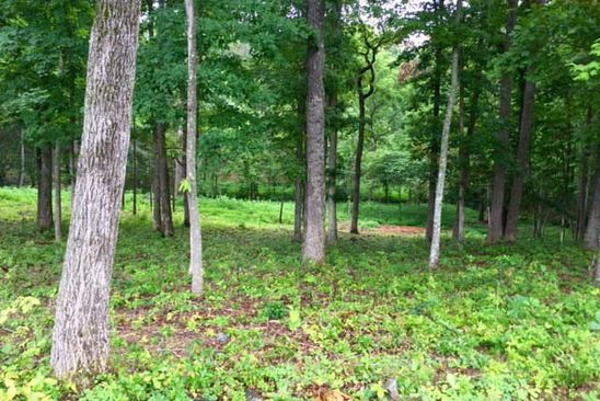 null bed null bath Vacant Land at 46 Lakewatch Cir Moneta, VA, 24121 is for sale at 69k - google static map