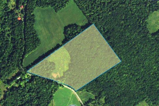 null bed null bath Vacant Land at  Case Hill Rd Franklin, NY, 13775 is for sale at 56k - google static map