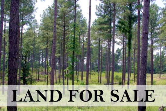 null bed null bath Vacant Land at  Woodland Ave Manorville, NY, 11949 is for sale at 250k - google static map