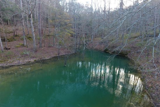 null bed null bath Vacant Land at  Sipsey Overlook Double Springs, AL, 35553 is for sale at 53k - google static map