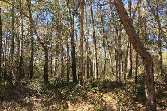 null bed null bath Vacant Land at 0 McIntyre St Fairhope, AL, 36532 is for sale at 75k - google static map