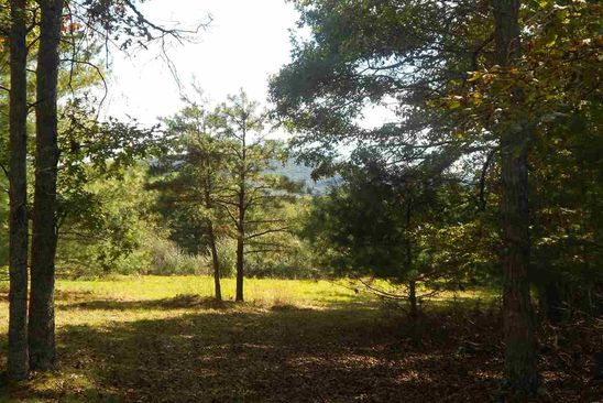 null bed null bath Vacant Land at W Deer Run Rd Williamsville, VA, 24487 is for sale at 32k - google static map