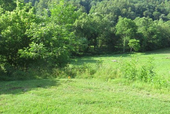 null bed null bath Vacant Land at  Tbd North Fork Riv Abingdon, VA, 24210 is for sale at 50k - google static map