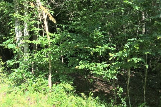 null bed null bath Vacant Land at  Wilmar Cir Blairsville, GA, 30512 is for sale at 21k - google static map